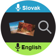 translator english slovak